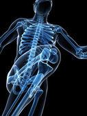 Runner anatomy on a black background — Stock Photo