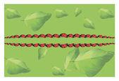 Mariquitas en las hojas — Vector de stock