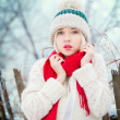 Winter Woman portrait - Foto Stock