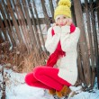 Winter girl - Foto Stock