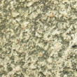 Royalty-Free Stock Photo: Background,highly detailed texture of granite rock surface