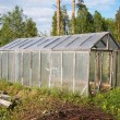 Stock Photo: Greenhouse