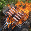 Sausages on the fire — Stock Photo #29647085