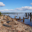 Old piles in the lake — Stock Photo #29647703