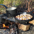 Frying pan and a pot on the fire — Stock Photo