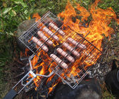 Sausages on the fire — Stock Photo