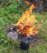 Teapot and kettle on a fire in the summer — Stock Photo