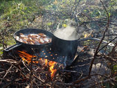 Frying pan and a pot on the fire — Stockfoto