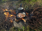Frying pan and a pot on the fire — Foto de Stock