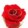 Wedding concept with roses and rings — Stock Photo #32233633