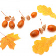 Acorns and leaves — Stock Photo