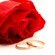 Foto Stock: Wedding concept with roses and rings