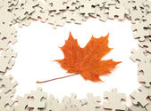 Puzzle and leaves — Stock Photo