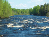 Coast of the river in the spring. Karelia, Russia — Foto Stock