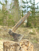 OLD AXE IN THE STUMP — Stock Photo