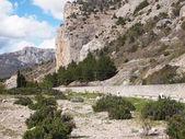 Carretera, bosque y roca — Foto de Stock