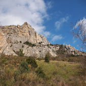 Crimean rock — Photo