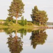 Stock Photo: Beautiful lake in Karelia