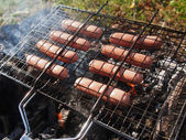 Roast sausages on fire — Stockfoto