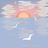 Seascape with sunset and seagulls — Stock Vector