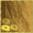 Stock Photo: Invitation floral card with yellow spring flowers on grunge striped jammed background