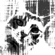 Stray cat call for help.Black and white sketch design. — Stock Photo