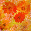 Abstract floral composition with red zinnia on grunge stained colorful background — Stock Photo