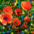 Floral card with bright red poppies on grunge stained colorful background — Stock Photo