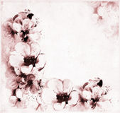Retro greeting postcard with abstract peach flowers — Stock Photo