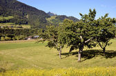 Countryside around Chevenoz in France — Stock Photo