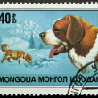 Stamp with Saint Bernard dog - Stock Photo