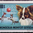 Stamp with circus dog - Stock Photo