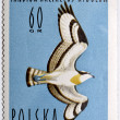 Stamp with Osprey — Stock Photo