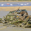 Shipwreck on the beach of Normandy in France — Stock Photo
