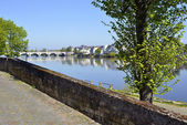 The banks of the Loire at Saumur — Stock Photo
