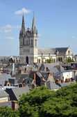 Cathedral Saint Maurice at Angers in France — Stock Photo