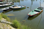 Small boats at Angers in France — Stock Photo