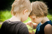Two boys are considering something in a glass — Stock Photo