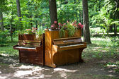 Two pianos in the park — Stock Photo