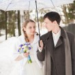 The bride and groom in the park in winter — Stock Photo