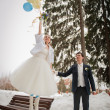 The bride and groom in the park in winter — Stock Photo #32789847