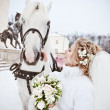 The beautiful bride with a horse in a winter park — Stock Photo #32792909