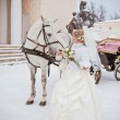 The beautiful bride with a horse in a winter park — Stock Photo #32792913