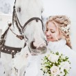The beautiful bride with a horse in a winter park — Stock Photo #32792933