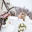 The beautiful bride with a horse in a winter park — Stock Photo #32792943