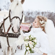 The beautiful bride with a horse in a winter park — Stock Photo #32792959