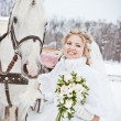 The beautiful bride with a horse in a winter park — Stock Photo #32792963