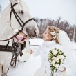Stock Photo: The beautiful bride with a horse in a winter park
