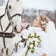 The beautiful bride with a horse in a winter park — Stock Photo #32792969