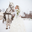 The beautiful bride with a horse in a winter park — Stock Photo #32792981